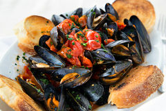 Mussels in tomato souce with bread in Italian style Stock Photography