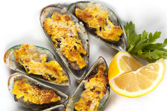 Mussels under cheese Royalty Free Stock Photography