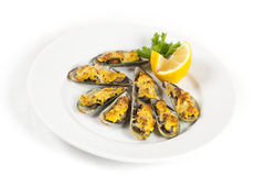 Mussels under cheese Stock Image
