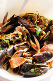 Mussels with vegetables and herbs Stock Images