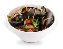 Mussels with vegetables in a plate Stock Images