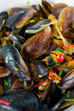 Mussels with vegetables Stock Images