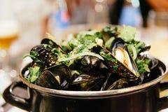 Mussels w Białym winie Z i czosnku z ostrość Francuskim dłoniakiem obraz stock