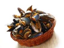 Mussels w koszu Zdjęcia Royalty Free