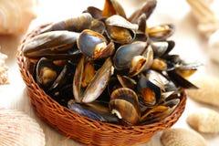 Mussels w koszu Obraz Stock