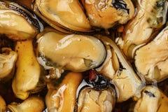 Mussels w oleju w górę obraz royalty free