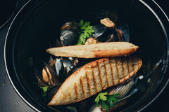 Mussels w smaży niecce w pomidorowym kumberlandzie i croutons na drylują talerza Zdjęcia Royalty Free