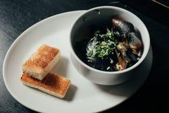 Mussels w smaży niecce w pomidorowym kumberlandzie i croutons na drylują talerza Obraz Royalty Free