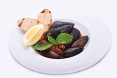 Mussels w talerzu w pomidorowym kumberlandzie z cytryną i grzanką na białym talerzu zdjęcie royalty free