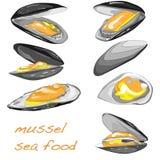 Mussels wektoru ilustracja royalty ilustracja