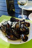 Mussels in white bouzar sauce. Croatian cuisine royalty free stock images