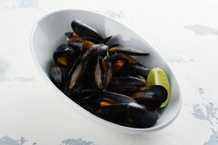 Mussels in white bowl Stock Images