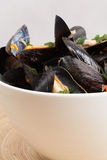 Mussels on a white bowl. Stock Image