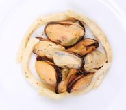 Mussels in a white plate. Isolated on a white background Stock Images