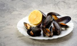 Mussels on white plate, lemon on grey background stock photography