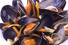 Mussels in White Wine Royalty Free Stock Images