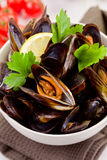 Mussels with white wine Stock Images