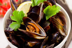 Mussels with white wine Stock Photography