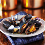 Mussels in white wine garlic sauce Stock Images