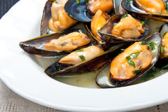 Mussels with white wine and parsley sauce Stock Photography