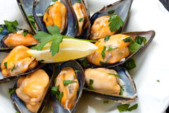 Mussels with white wine and parsley sauce Stock Photo