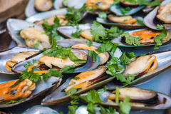 Mussels. Royalty Free Stock Photography