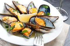 Mussels with white wine and parsley sauce Royalty Free Stock Photography