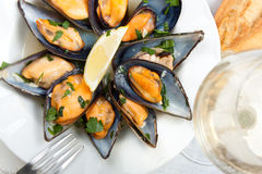 Mussels with white wine and parsley sauce Royalty Free Stock Images