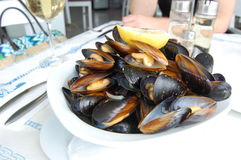 Mussels in white wine sauce. Served on a white plate, garnished with slice of lemon Royalty Free Stock Image