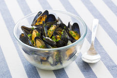 Mussels with white wine sauce in modern plate on table Royalty Free Stock Photography
