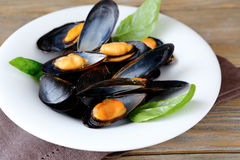 Mussels with  wine and basil Royalty Free Stock Photography
