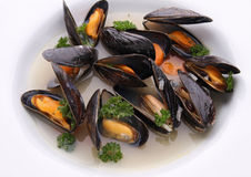 Mussels with wine sauce Stock Photos