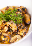 Mussels in wine sauce Royalty Free Stock Photo