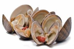 musslor äter nytt smooth till Arkivfoto