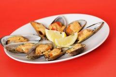 musslor royaltyfri fotografi