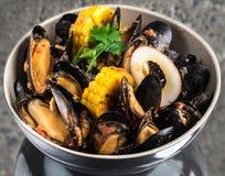 Musslor i kräm- sås för curry Arkivbild