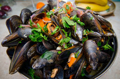 Musslor med grönsaker royaltyfri foto