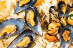 Musslor och bläckfisksallad royaltyfri fotografi