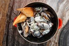 Musslor som lagas mat med krämig sås och tjänas som i metallkruka Royaltyfri Bild