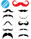 Mustache Madness Stock Photography