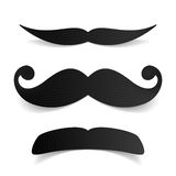 Mustaches. Black Mustaches vector illustration on white Stock Images