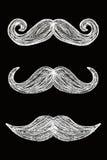 mustaches Στοκ φωτογραφία με δικαίωμα ελεύθερης χρήσης