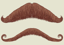 Mustaches for man. Mustaches set for man.Vector collection fake for design Stock Photography