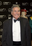 Mustafa Fahmy, acteur égyptien dans DIFF Photographie stock