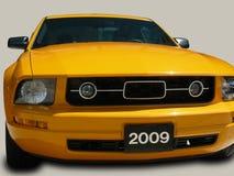 Mustang Images libres de droits