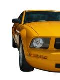 Mustang Immagini Stock Libere da Diritti