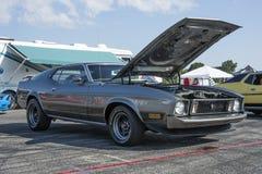 Mustang 1971 Foto de Stock