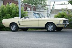 Mustang. Picture of the 1968 Ford Mustang Convertible royalty free stock photo