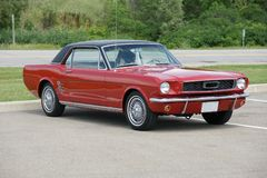 Mustang. Picture of the red 1966 Ford Mustang coupe Stock Photos