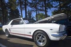 1966 Mustang Stock Fotografie